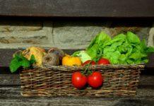 Mischkultur im Gemüsebeet